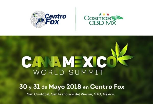 Banner-Cartas-Sectores-CANNAMEXICO.jpg