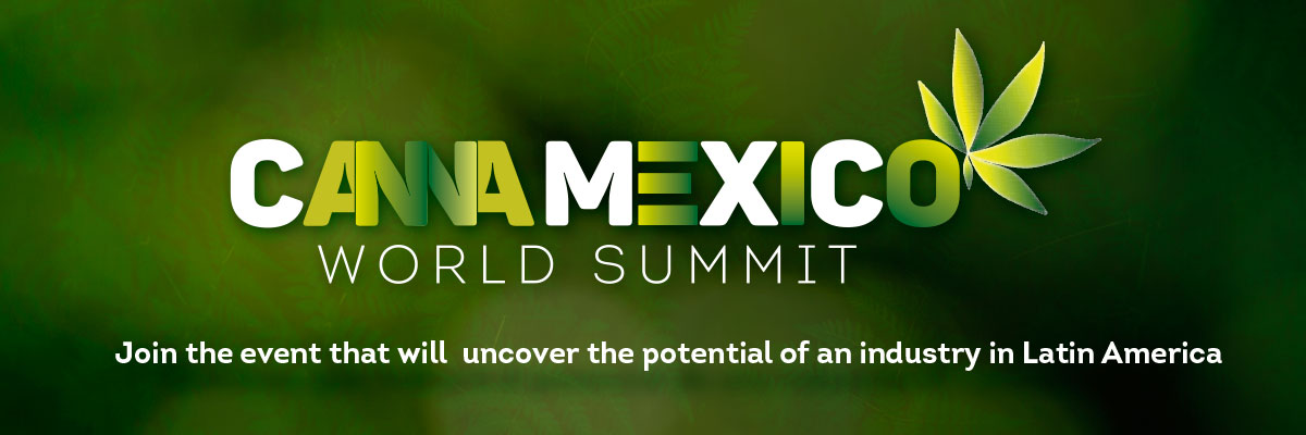 cannamexico-banner-eng.jpg