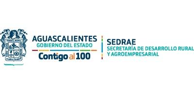Gobierno de Aguascalientes